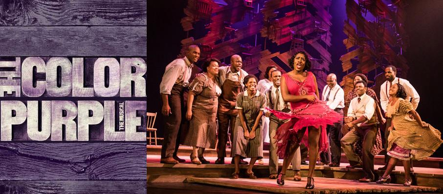 The Color Purple at Stanley Theatre